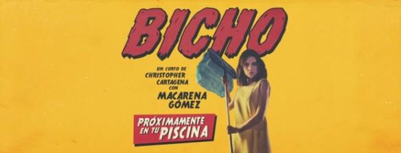 BICHO-CARTEL5-web-ok